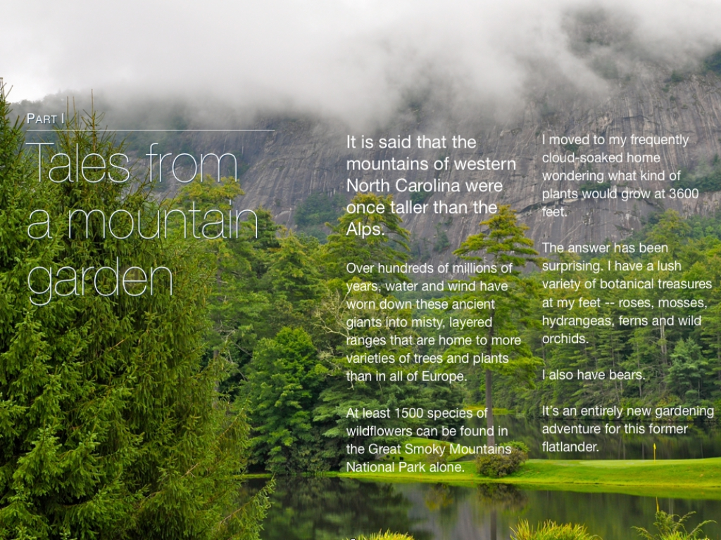 my image garden download for ipad