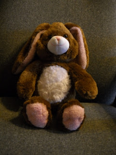 The Plush Bunny