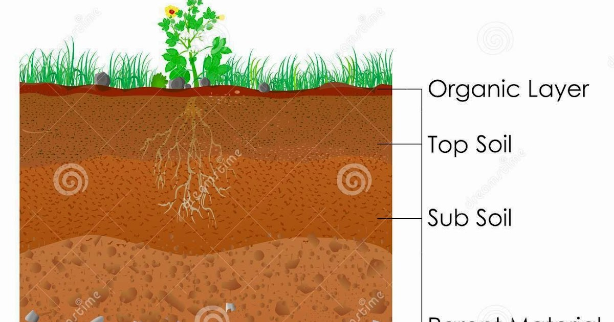 Team tipuranga soil layers for Soil 3 phase diagram