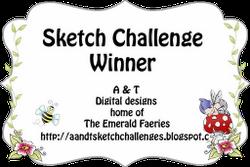 Winner for challenge 15