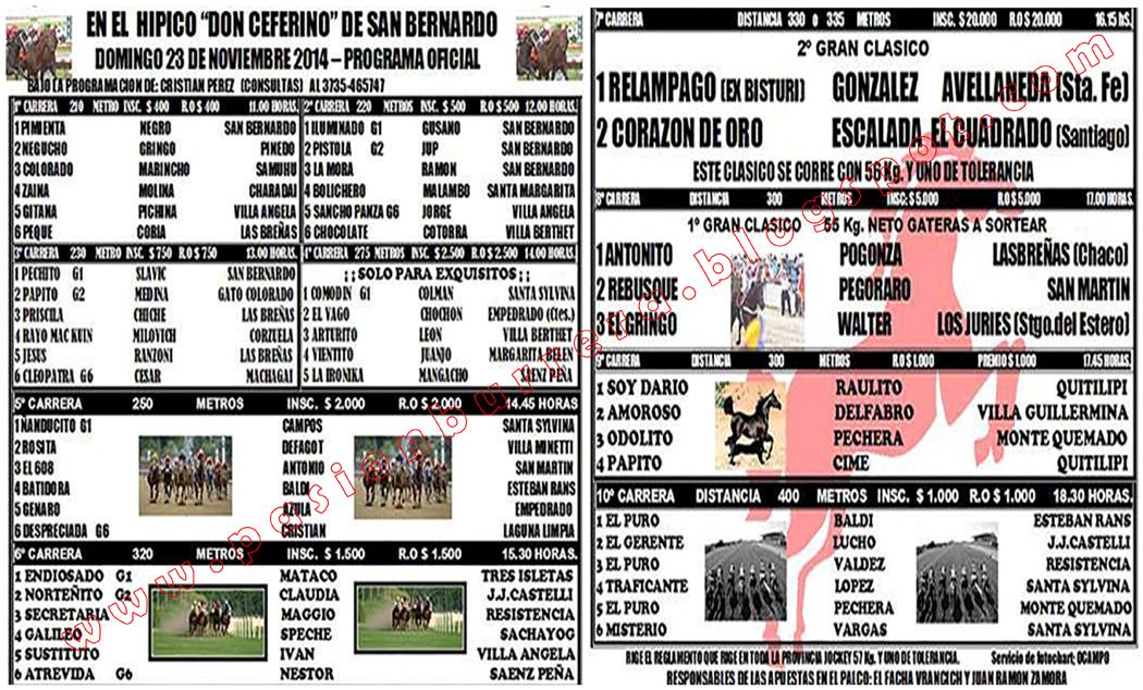 SAN BERNARDO - 23 - PROGRAMA