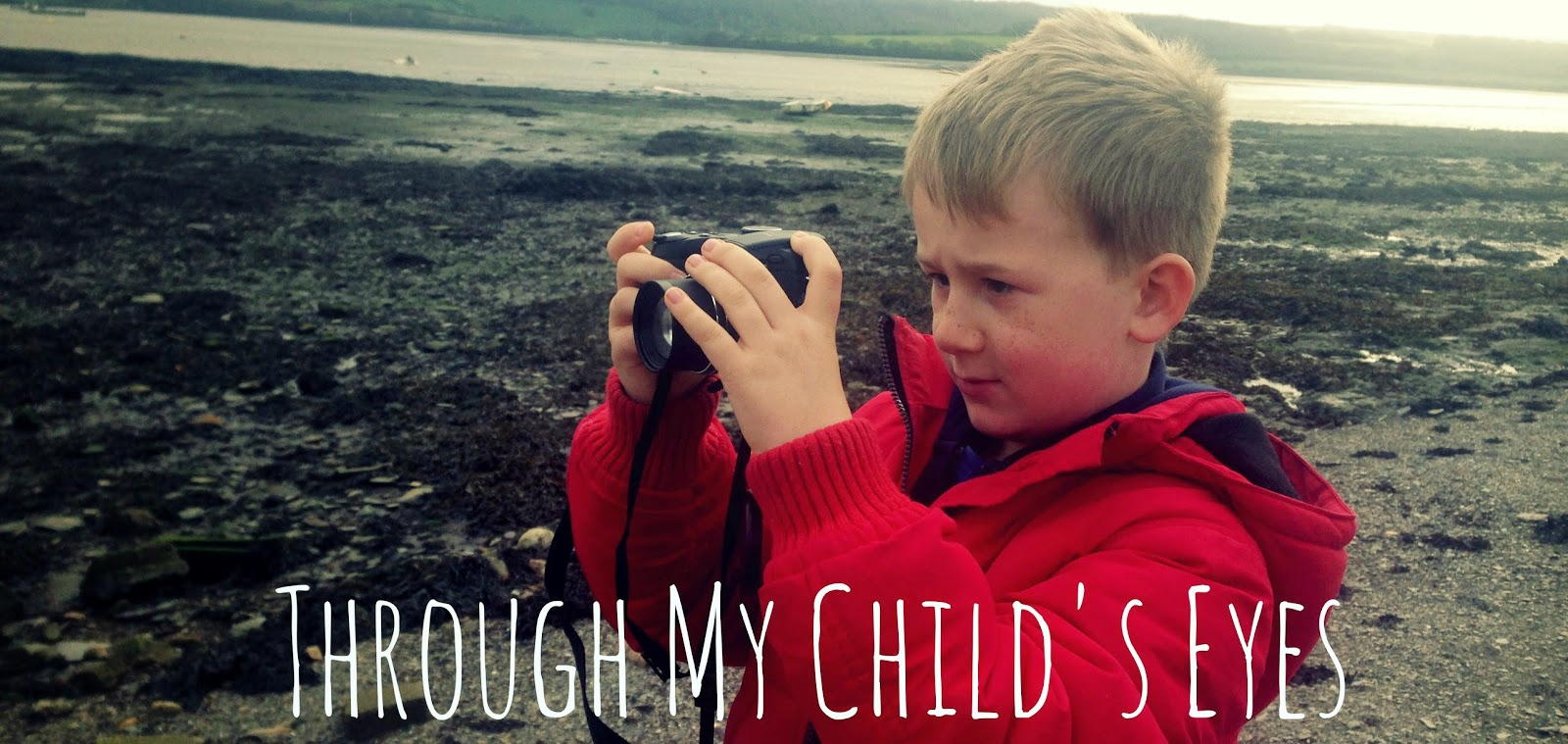 mini photographers, little, mini, camera, link up, parent blogger, single parent, kids take photos