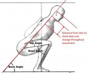 rippetoe+squat.jpg