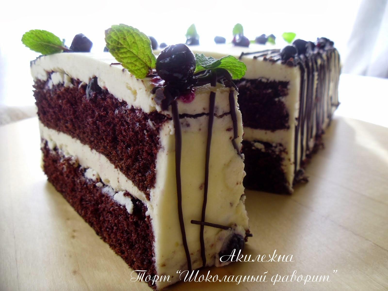 Торт «Шоколадный фаворит»