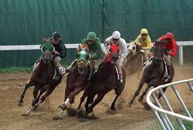 17.10.2013 izmir yarış programı tahmin