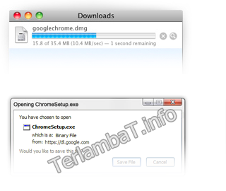 Download Google Chrome Offline