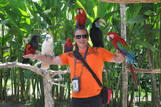 Bali Bird Park: Conservation Of Rare Birds