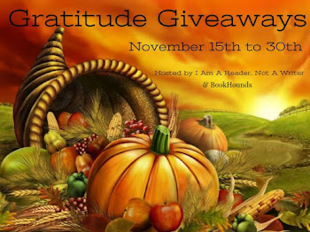 Upcoming Giveaway: November 15-30th