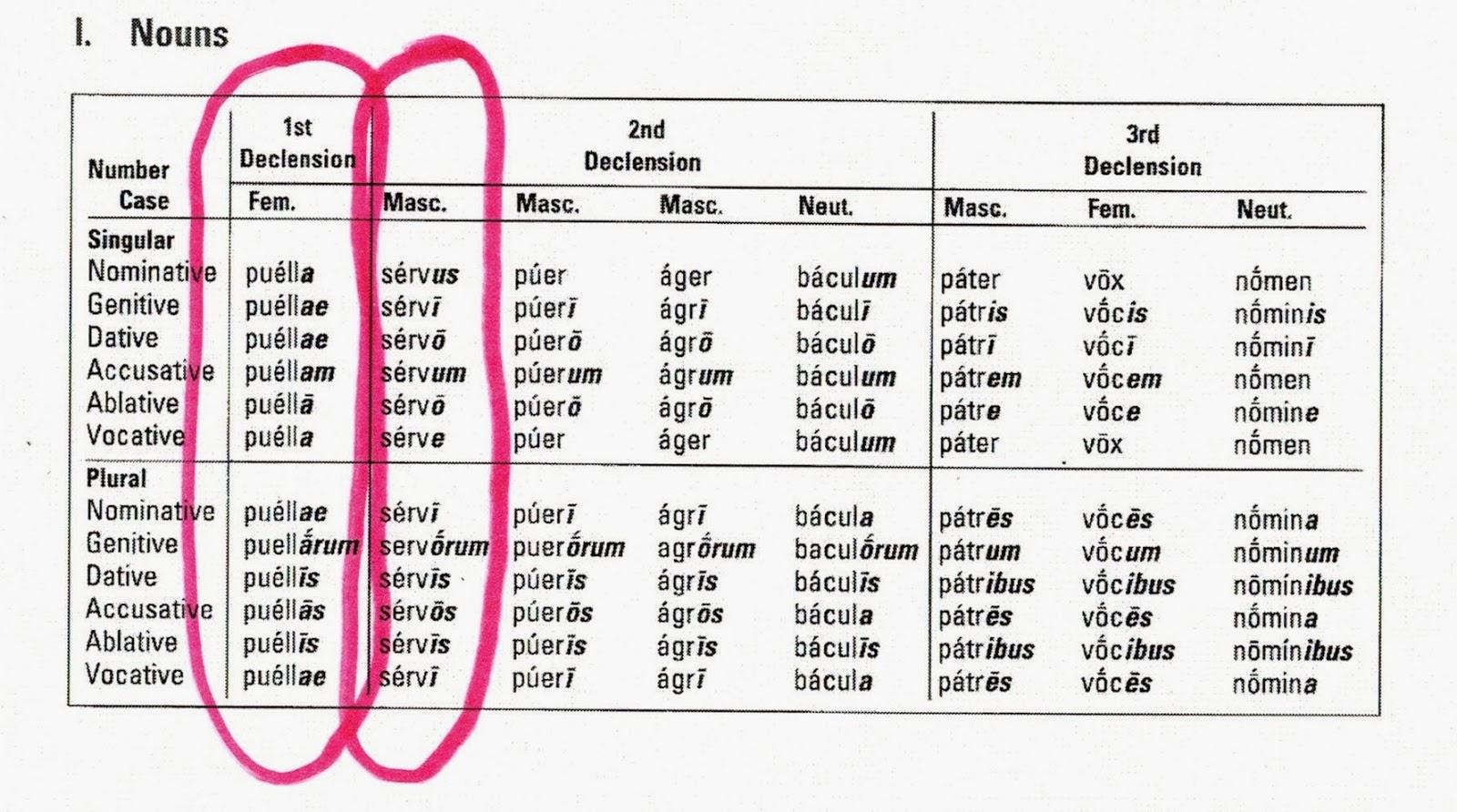 Latin I: Latin Noun Charts for Quiz