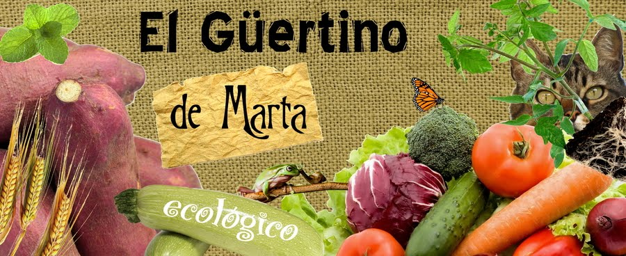 El Güertino ecológico de Marta
