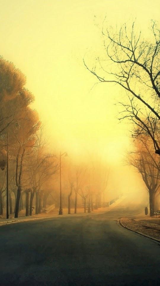 Golden Autumn Trees Road  Galaxy Note HD Wallpaper