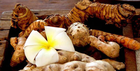 Manfaat Jahe untuk pengobatan Herbal