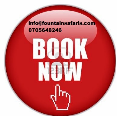 Book your fligh online