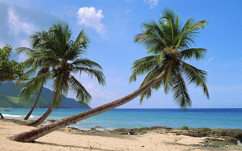 beautiful tropical beach hd - photo #16