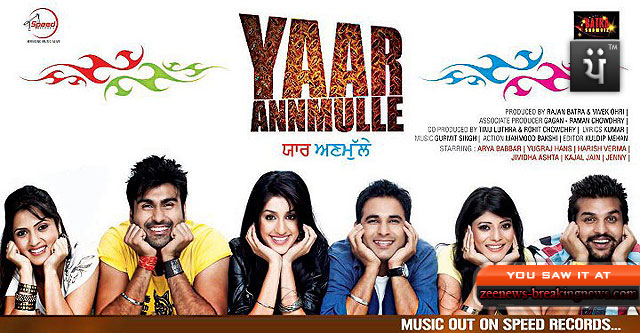 Yaar Anmulle (2011) DVDPunjabi