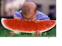 Buah-buahan yang Dilarang Dimakan