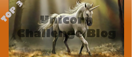 1e in top 3 bij #19 Unicorn