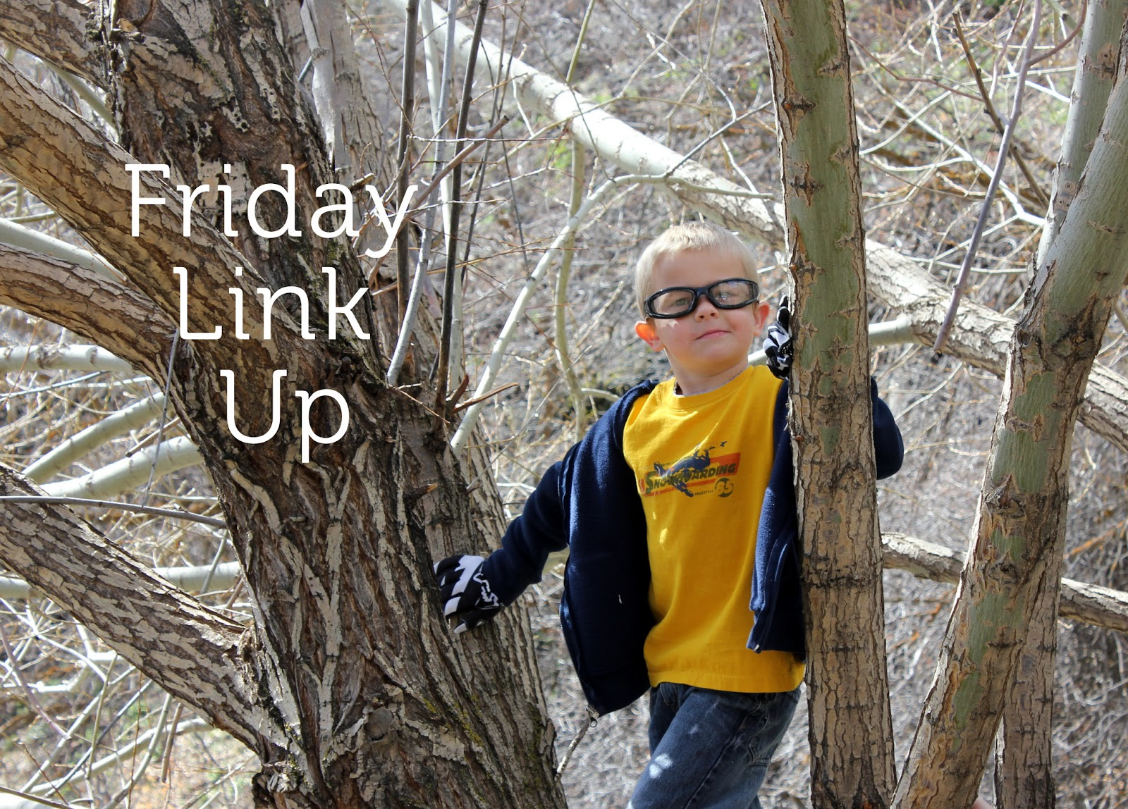 Friday Link Up Squibs and Crackers