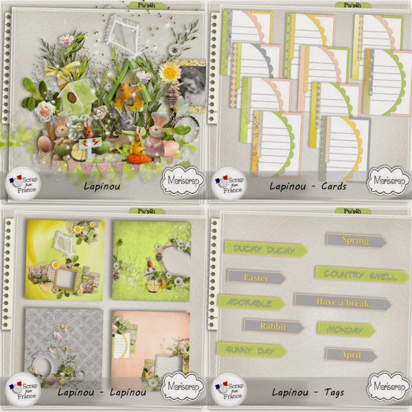 http://scrapfromfrance.fr/shop/index.php?main_page=product_info&cPath=88_91&products_id=5551
