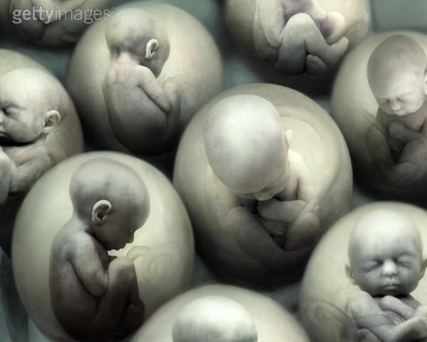 imagen sobre aborto: