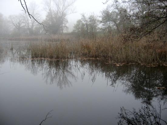 aiquattroventi-autunno-lagoni-riflessi