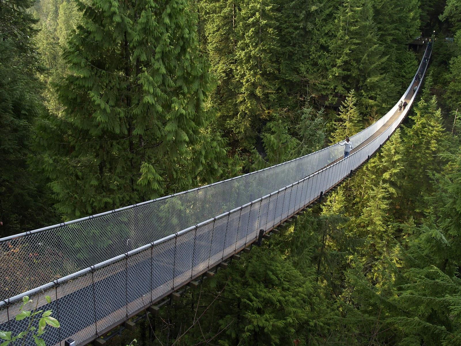 capilano suspension bridge british columbia canada architecture. Black Bedroom Furniture Sets. Home Design Ideas