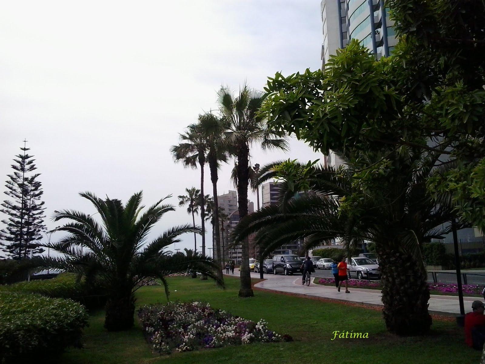 Malecón Cisneros y ciclovía