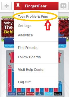 Verify Your Blog on Pinterest.