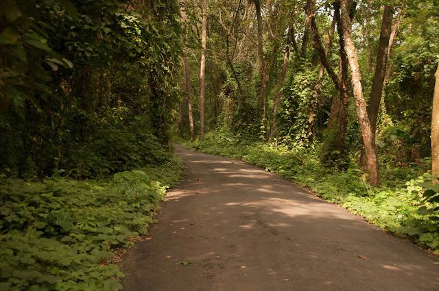 Kerala Part II - Waterscapes, Kumarakom