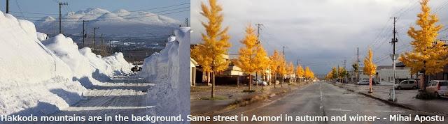 冬&秋 市内から八甲田へ
