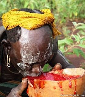 Tradisi Minum Darah Sapi Prajurit Suku Pedalaman Afrika