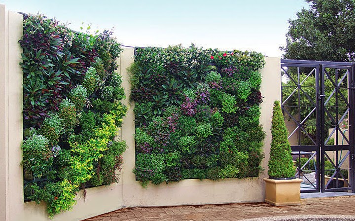 Vertical Garden System For Internal And External Walls Of