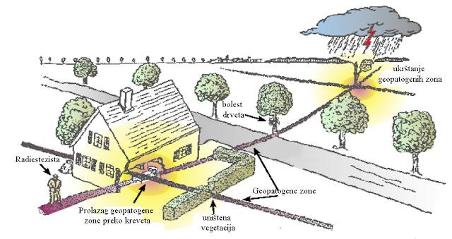 Uticaj geopatogenog štetnog zračenja na okolinu