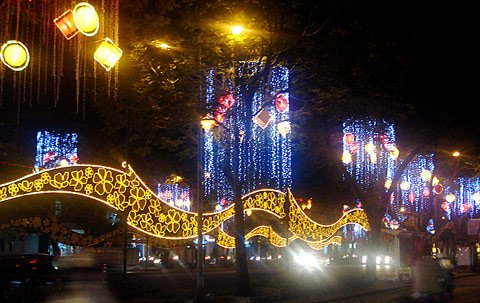 Ornaments on the occasion of Tet Le Loi street