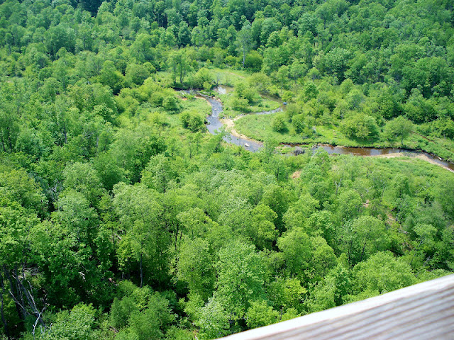 Amazing view of the creek below from the Kinzua Bridge