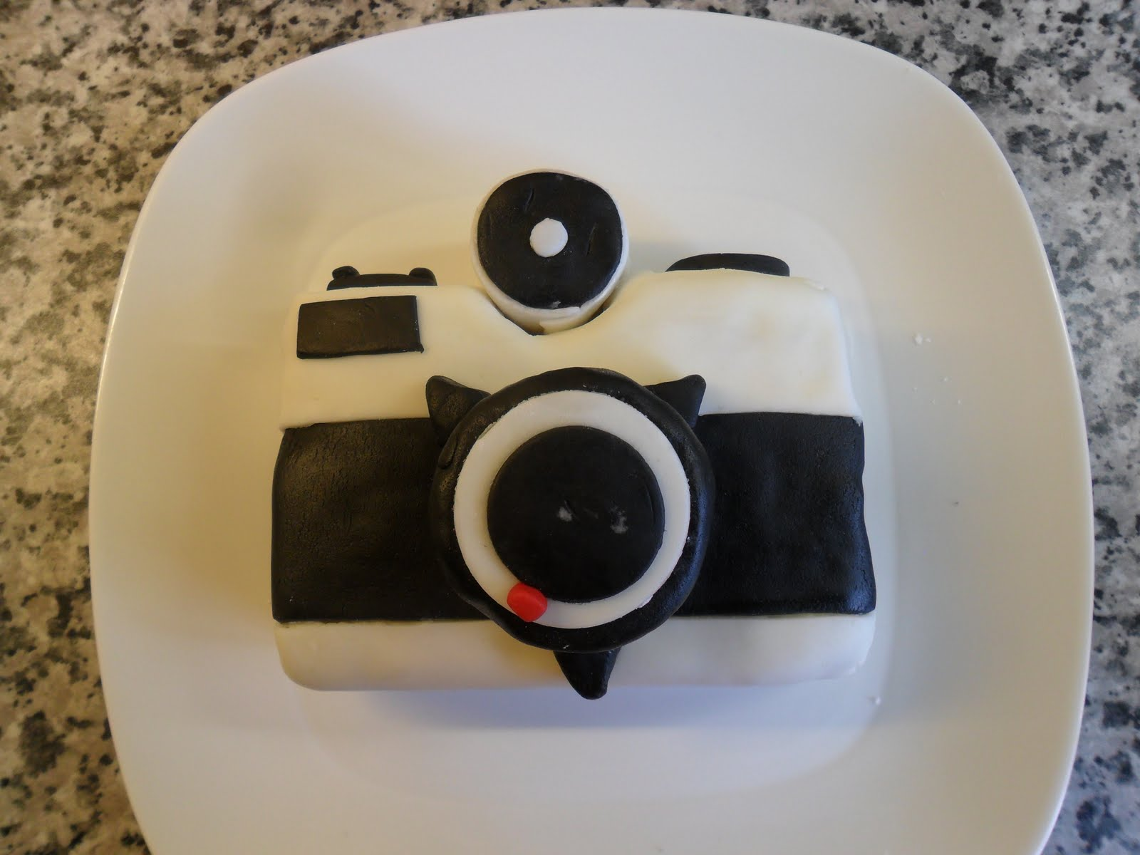 Cake inspired by a Fuji Pet camera and designed by Adam Robertson. Adam  Robertson's blog
