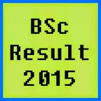 PU Lahore BSc Result 2016