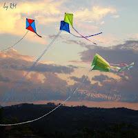 Pipas voando ao sabor do vento.