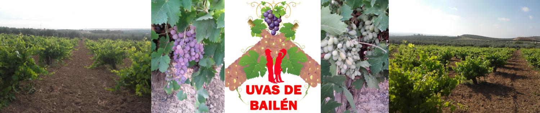 Uvas de Bailén | Venta o Compra de Uvas de Mesa