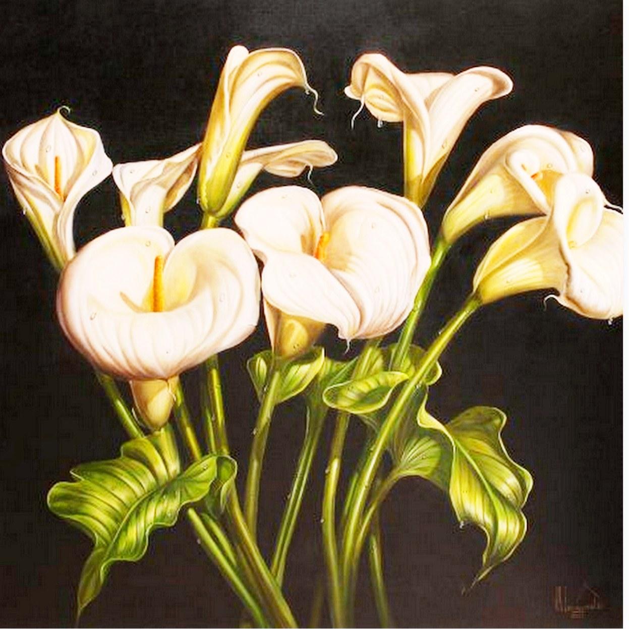 Arte Pinturas Óleo: Imágenes de Flores Pintadas al Óleo