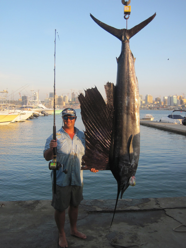 Big fishes of the world sailfish atlantic istiophorus for World of fishing
