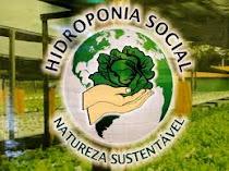 Hidroponia Social