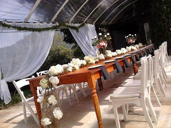 Arranjo mesa da familia Riodejaneiroflorista