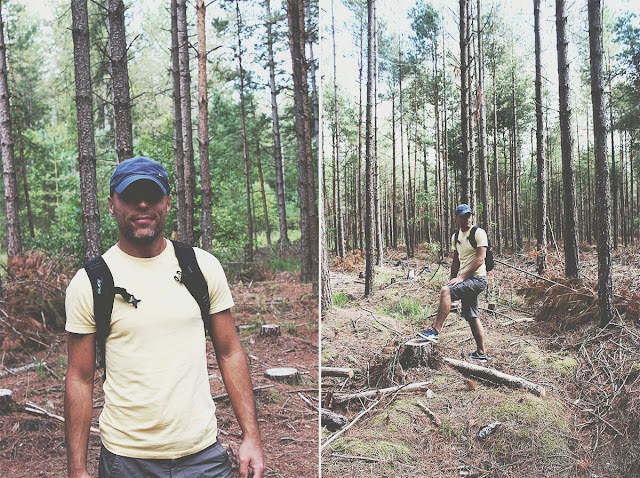 hiking-forest-ringwood-summer-story-todaymyway