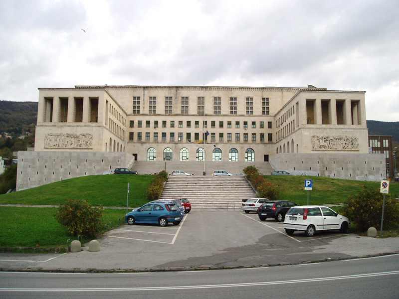 University Thesis