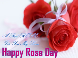 rose  day images for facebook