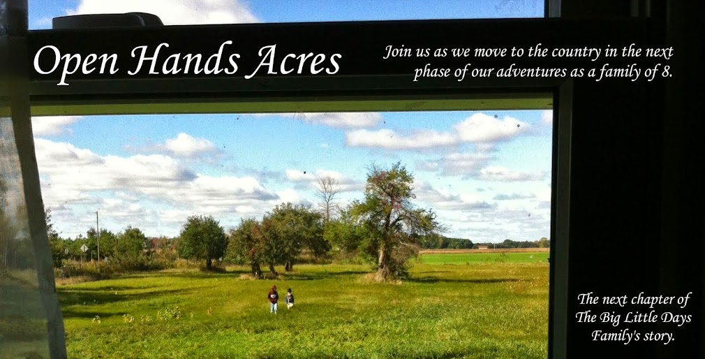 Open Hands Acres
