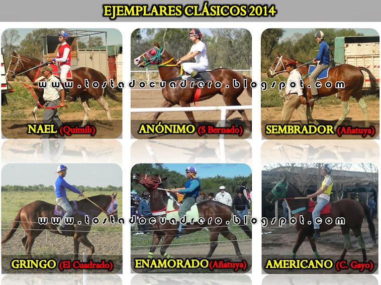 EJEMPLARES CLASICOS 2014