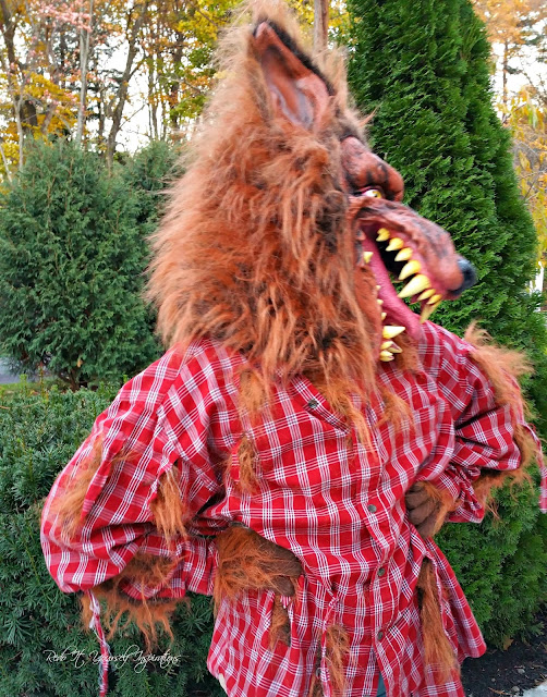 Easy diy werewolf costume redo it yourself inspirations easy diy dude get a grip solutioingenieria Choice Image