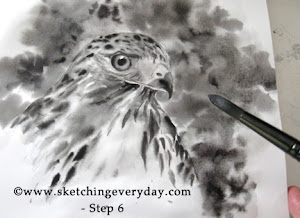 Draw A Hawk